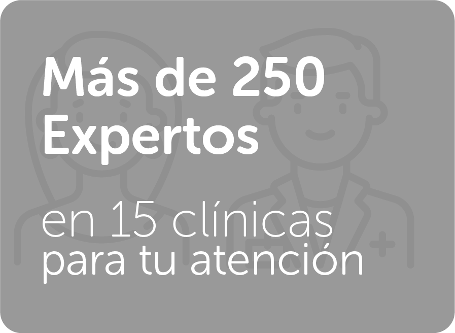 Más De 250 Expertos