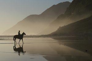 horse, mountains, lagoon